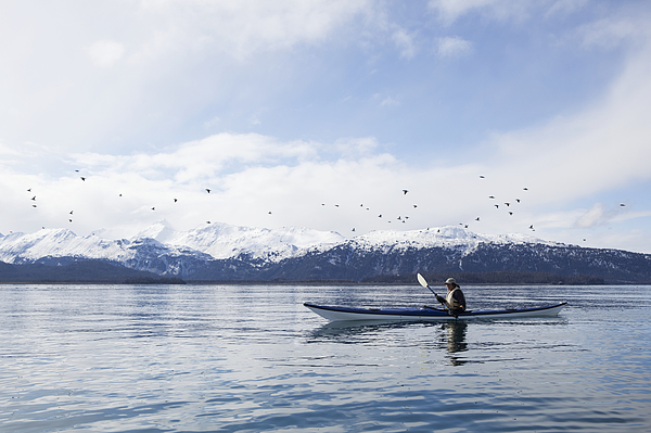 Paddling In A Canoe On Tranquil Water With A Flock Of Birds Flying Overhead And A View Of The Snow Capped Kenai Mountains, Kachemak Bay State Park Photograph by Scott Dickerson / Design Pics