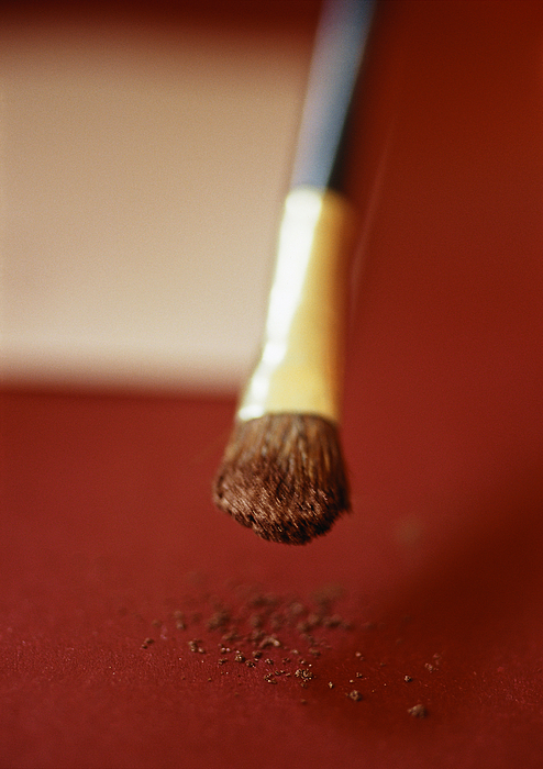 Paintbrush, Close-up Photograph by Michele Constantini