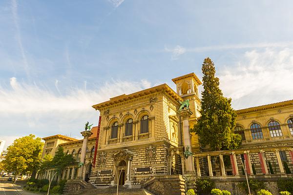 Palais De Rumine In Lausanne Photograph by Mats Silvan