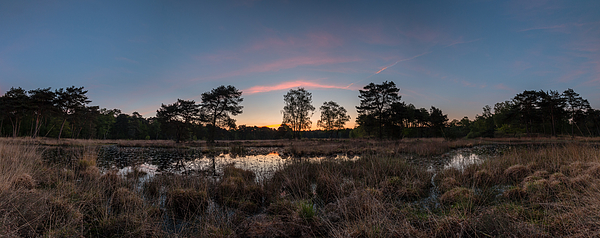 Panorama Pink Silence Photograph by William Mevissen
