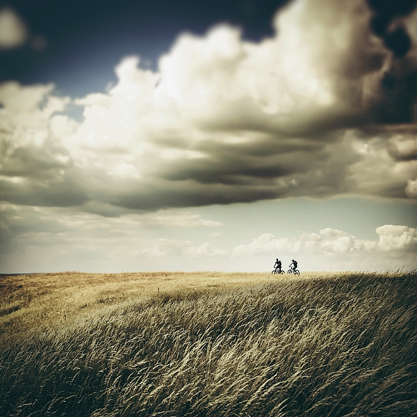 People Riding Bicycles On Agricultural Field Against Cloudy Sky Photograph by Nidal Sadeq / EyeEm