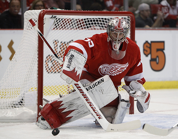 Phoenix Coyotes v Detroit Red Wings - Game Four Photograph by Gregory Shamus