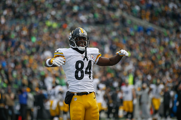 Pittsburgh Steelers v Seattle Seahawks Photograph by Otto Greule Jr