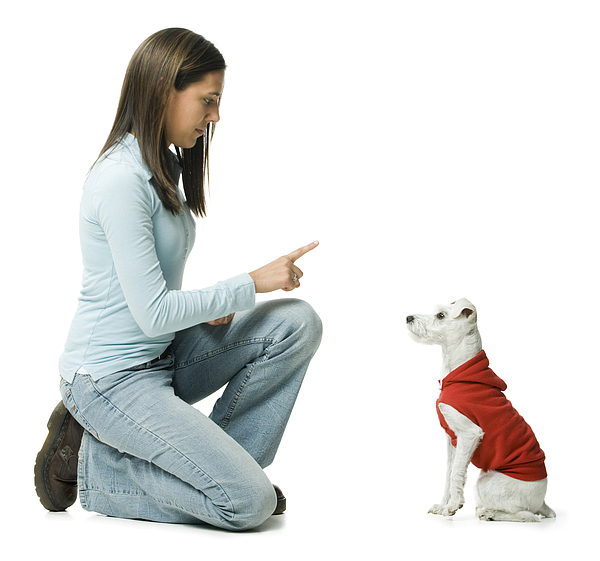 Profile of a young woman giving instructions to her dog Photograph by Rubberball/Mike Kemp