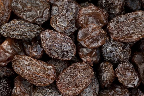 Raisins Photograph by DonNichols