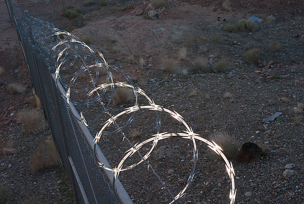 Razor wire on a fence on the coast Photograph by Fotosearch
