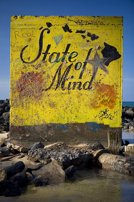 Real Hawaii state of mind shoreside painting. Photograph by Merten Snijders