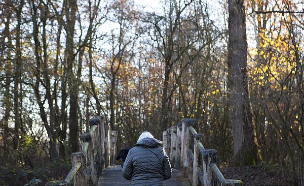 Rear View Of Woman Wearing Jacket Walking On Footbridge Amidst Bare Trees Photograph by Paulien Tabak / EyeEm