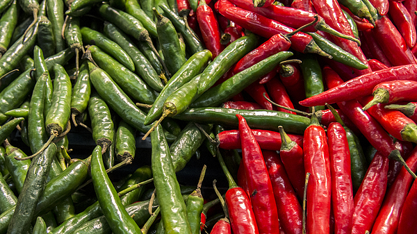 Red and green peppers Photograph by Fajrul Islam