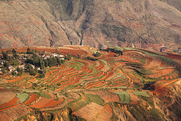 Red soil farmlands in Dongchuan district Photograph by MOAimage