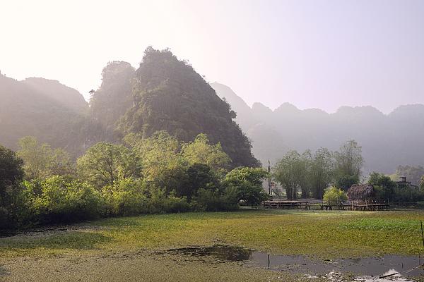 Rice fields and the karst rocks of Ninh Binh Photograph by Bernd Schunack