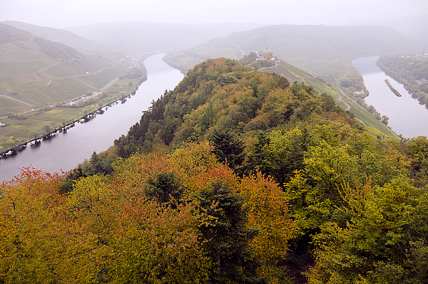 River Moselle in Autumn Photograph by Bernd Schunack