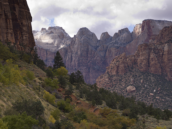 Rock formations in Zion National Park Photograph by Fotosearch