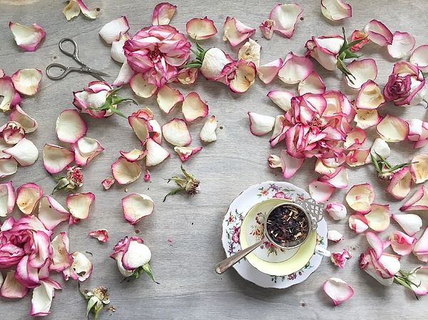 Rose Petals And A Cup Of Tea Photograph by JuliaK
