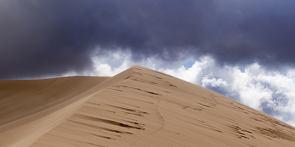 Sand dunes in a desert Photograph by Fotosearch