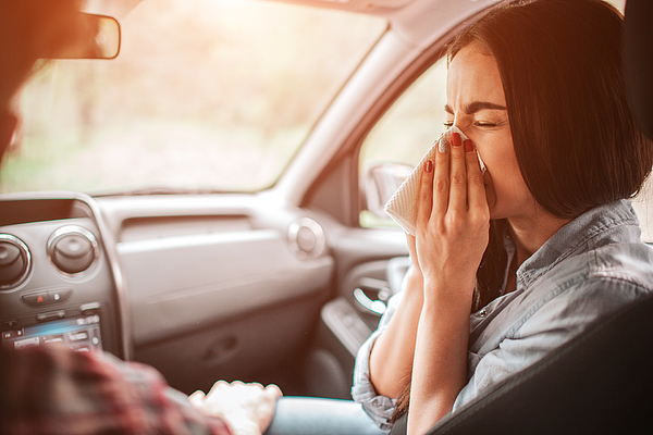 Sick girl is sneezing in napkin. She has closed her eyes. It is paiful for her to do it. Guy is holding his hand on her leg. Photograph by Estradaanton
