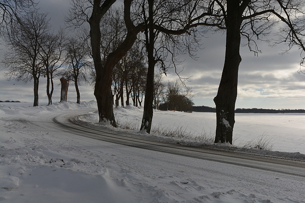 Snowy Land In Winter Photograph by Karin Broholm / FOAP