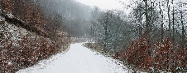 Snowy winter trail Photograph by Mavroudakis Fotis Photography