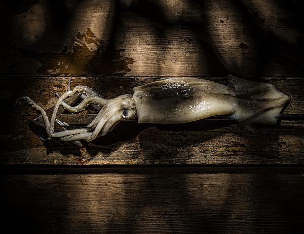 Squid And Harpoon Photograph by Ian Gwinn