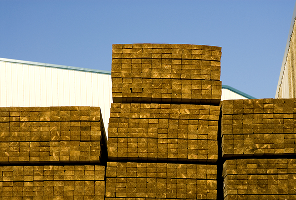 Stacked timber in yard Photograph by Lyn Holly Coorg
