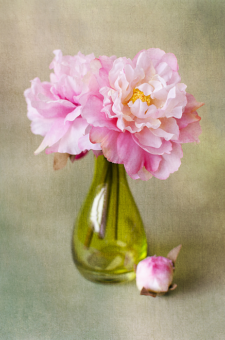 Still life with peonies Photograph by Natalia Ganelin