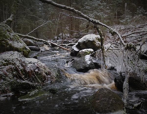 Stream In Forest During Winter Photograph by Juha Pöysä / EyeEm