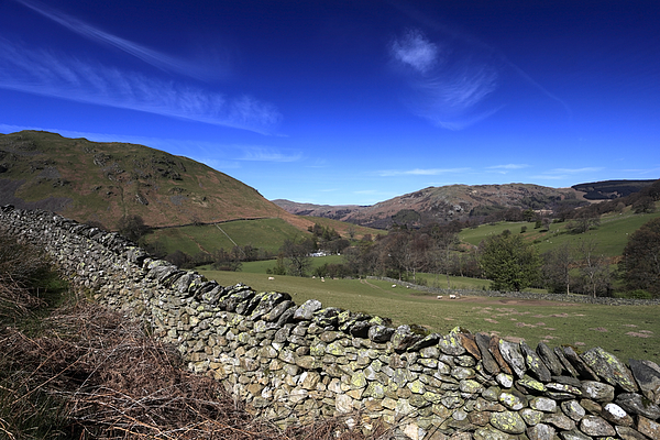 Summer, Boredale valley, Lake District Photograph by Dave Porter Peterborough Uk