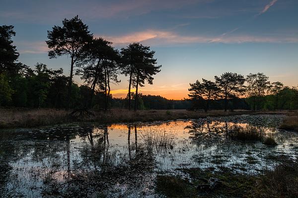 Sunrise Colors Photograph by William Mevissen