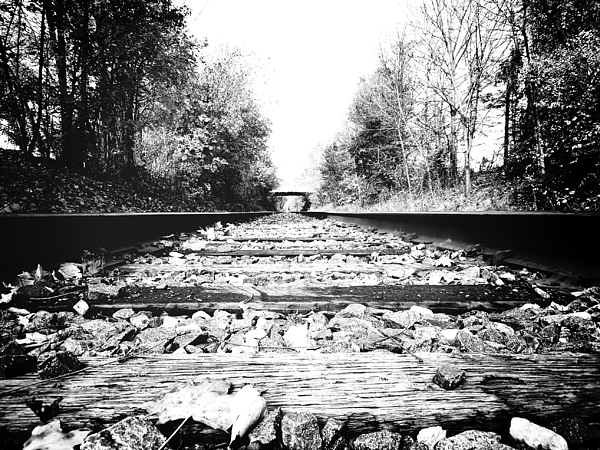 Surface Level Of Railroad Tracks Photograph by Lisa Kehoffer / EyeEm