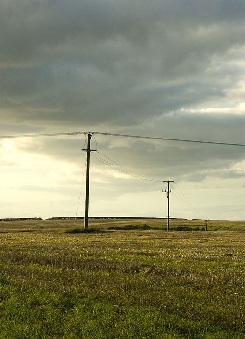 Telegraph poles in field and cloudy sky Photograph by Lyn Holly Coorg