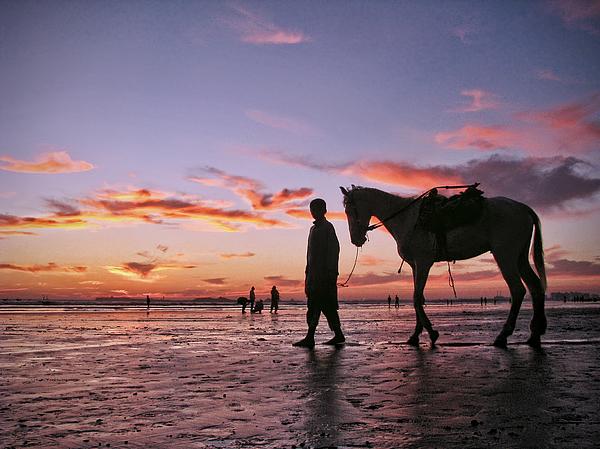 The dusky shadows Photograph by Bashir Osmans Photography