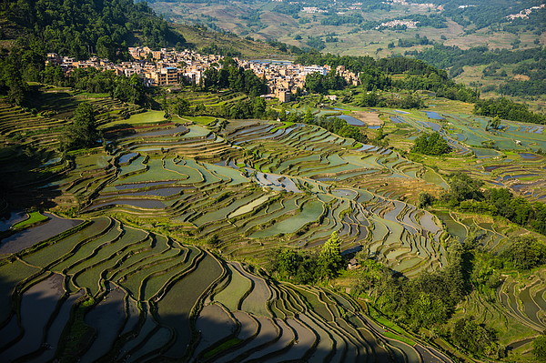 The Scenery Of The Terraced Fields Photograph by Zhouyousifang