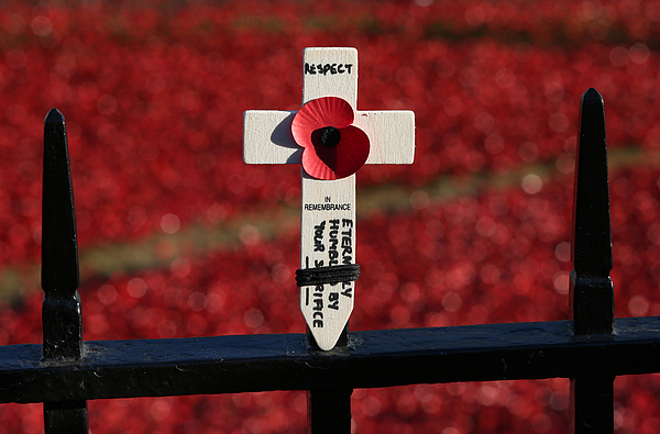 The UK Observes Remembrance Sunday Photograph by Peter Macdiarmid