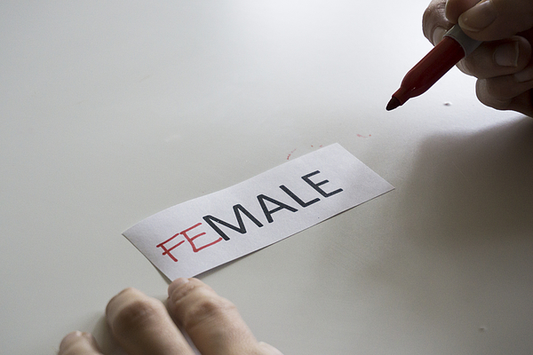 The word MALE, with the letters FE added to spell FEMALE Photograph by Melinda Podor