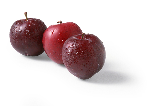Three red plums, white background Photograph by Isabelle Rozenbaum
