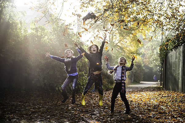 Three Young Boys, Playing Outdoors, Throwing Autumn Leaves Photograph by Bonfanti Diego