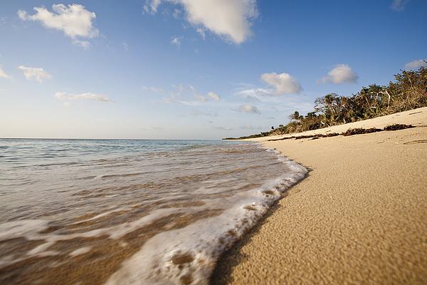Tranquil beach scene Photograph by PhotoAlto/James Hardy