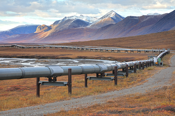 Trans-Alaska Pipeline and Dalton Highway Photograph by Rainer Grosskopf
