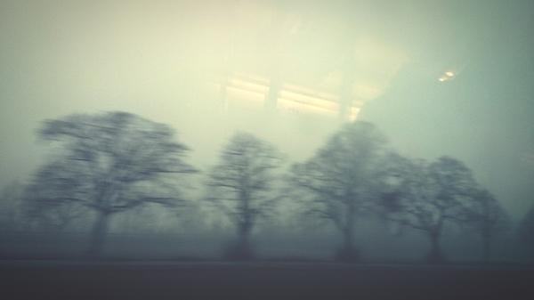 Trees On Field In Foggy Weather Seen From Vehicle Glass Window Photograph by Roman Pretot / EyeEm