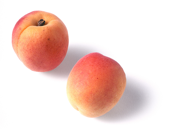 Two Apricots, White Background Photograph by Isabelle Rozenbaum