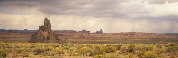 USA, Arizona, Church Rock, near Kayenta, rock formations and wild flowers Photograph by Timothy Hearsum