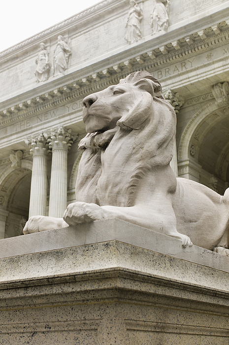 USA, New York, New York City, New York Public Library, Close up of sculpture of lion Photograph by Tetra Images