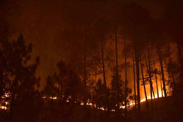 Uttarakhand Forest Fires Photograph by Hindustan Times