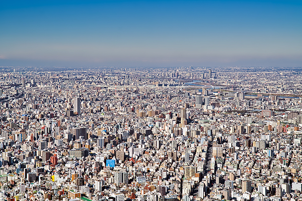 View of the city of Tokyo Photograph by Mauro Tandoi
