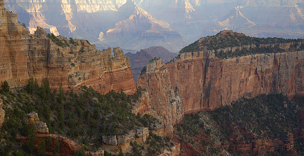 View Of The Grand Canyon From The North Rim Photograph by Timothy Hearsum