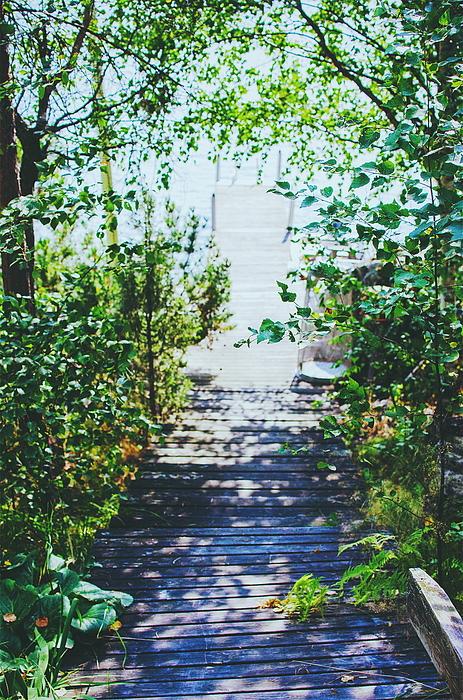 View Of Wooden Boardwalk Photograph by Jemina Virtanen / EyeEm