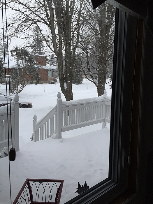 View Through Your Window Frame Photograph by Dustin Abbott