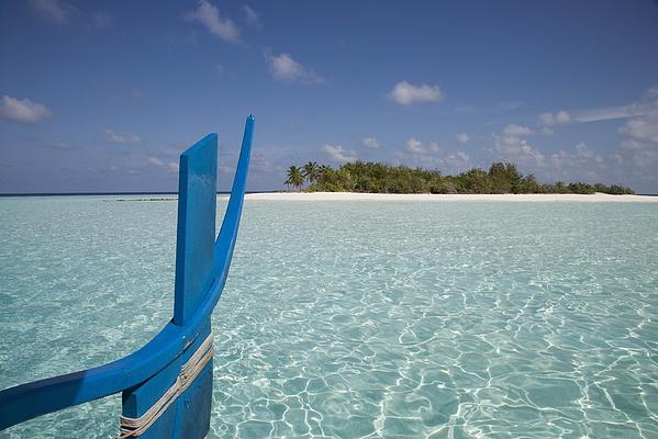 Vilamendhoo Island, Ari Atoll, Maldives, Indian Ocean, Asia Photograph by Angelo Cavalli / robertharding