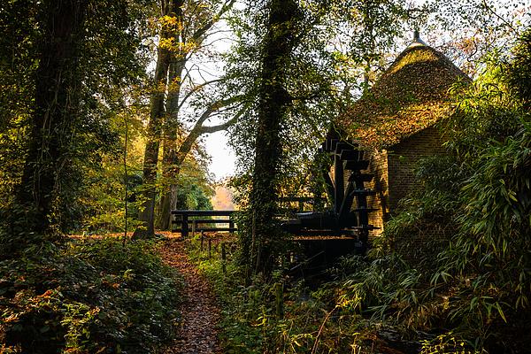 Watermill rosmolen Photograph by William Mevissen