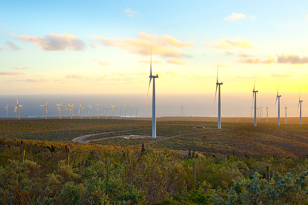 Windmills On Field Against Sky During Sunset Photograph by Jose Luis Stephens / EyeEm